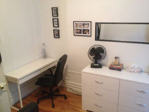 1 BEDROOM SUMMER SUBLET (June-August)