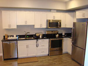 Luxury fully furnished One & Two bedroom condos $1650