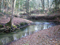 Picturesque, w/Lakeview, Trails, Creek, Hardwood