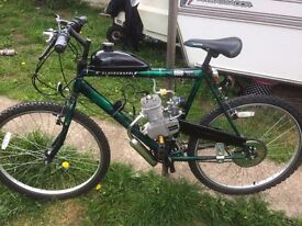 80cc engine in mountain bike rev and go. possible swap