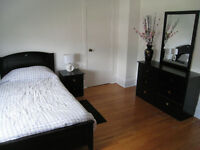 Nice Furnished Room Dufferin St Rogers Rd Ttc Central Located.