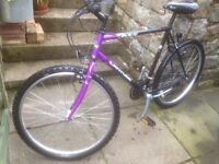 Trek gents mountain bike in very good condition not used anymore £70.