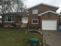 Near white oaks area and country side house for rent
