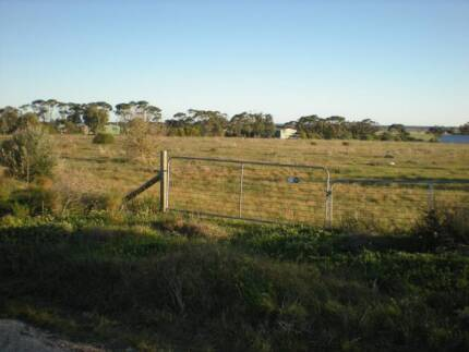 HOBBY FARM 5 ACRES LAND 35MIN x SALISBURY .8 TITLES.swap FORD GT Adelaide Region Preview