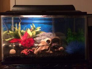 Aquarium 10 gallons à vendre