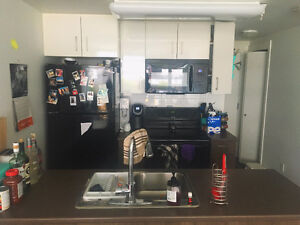 Roomate needed - bedroom in downtown apartment for rent
