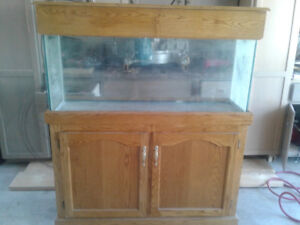 Fish tank with solid oak cabinet