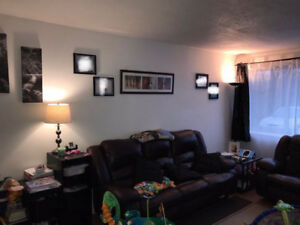 Large 4 1/2 Waterfront West Island Apartment