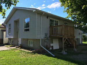 1 Room available in 6 Bedroom / 2 Bath home, recently renovated Belleville Belleville Area image 1