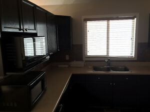 3 Bedroom house for rent  in Millwood Silverbeery