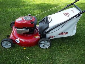 (NEAR NEW) Briggs & Stratton Bagger Lawnmower