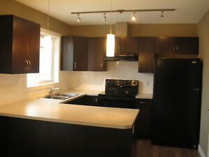 Luxury New TownHome in Mactaggart Area Available for Rent