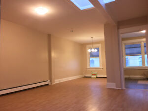 2 Bedroom BEAUTIFUL Apt + Skylight + CLEAN + Downtown + A/C