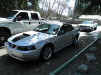 MUSTANG GT COVERTIBLE