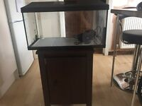 2ft fish tank 50quid