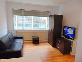 Studio Flat 5 mins from Victoria station SW1E