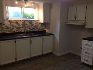 Beautifull and fully renovated apartment for rent in Hull