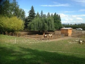 2+ acre hobby farm in SE Kelowna