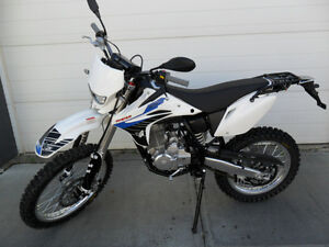 2015 Pitster Pro XTR 250 LC