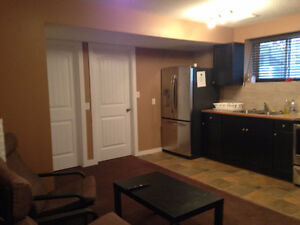 brand new basement for rent