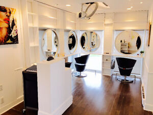 ** CHAIR FOR RENT IN SALON **50$ A DAY**WEST ISLAND***** West Island Greater Montréal image 3