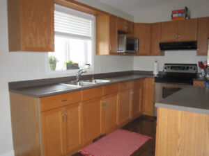 Kitchen Craft Cabinets Kijiji In Winnipeg Buy Sell Save
