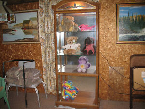 Display case for collectables.