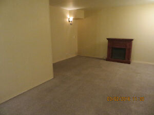 Chinook Mall, large 1 bdrm lwr, private yard & entrance, LRT