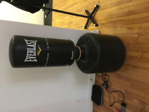 Everlast freestanding punching bag