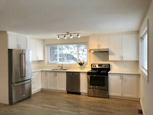 2 bedroom suite in Stoney Creek (all included)