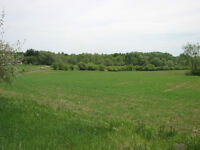 2 Available Residential Lots in Tara - The Saugeen Team