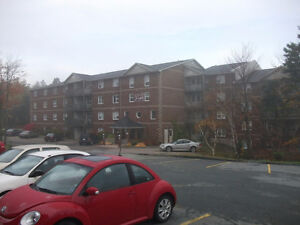 Newly Renovated Apartments Clayton Park