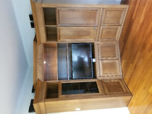 Beautiful and big custom built entertainment centre