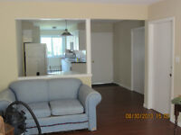 Perfect 3 Bedroom at the Base of Brock