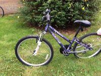 Apollo xc24 girls bike