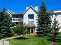 GORGEOUS 3-bedroom condo walking distance to UofM