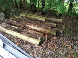 Cedar Logs for sale