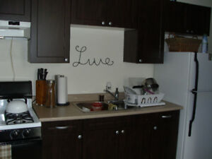 ALL INCLUSIVE, 1-Bdr/QUEENS/RMC/HOSPITALS/DOWNTOWN