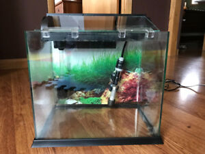 Waterfall Oasis 5 gallon fish tank with accessories