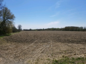 20 acres in Clarington - 10 mins from Brooklin, just above Oshaw
