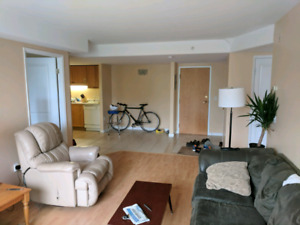 Room in large 2-bedroom apartment South End