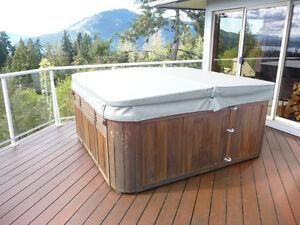 Sundance 8 person hot tub