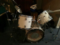 Drum Maple Shell