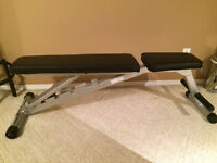 Incline workout bench, pullup bar, curl bar, and bumbbells
