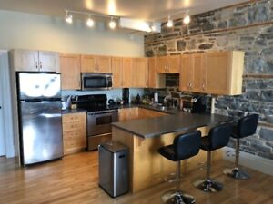 Large 1 Bedroom for Sublet (May-August)
