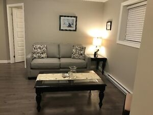 Fully furnished, brand new, 2 bed, 1 sofa bed, 1 bath apartment