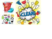 If you are looking for the experience cleaner I will help you