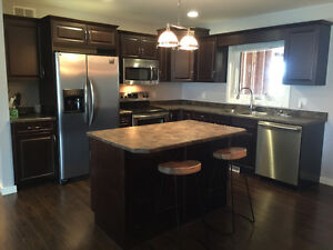 Kitchen Craft Cabinets and appliances!