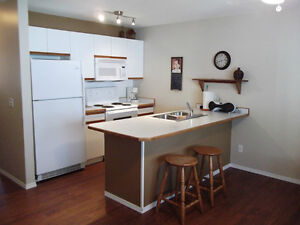 Waterfront Condo on Mara Lake, in Sicamous