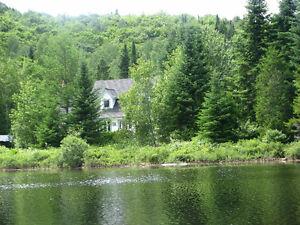 Grande maison bord de lac avec forêt